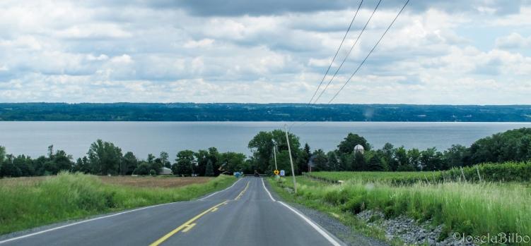 Camino de Ithaca